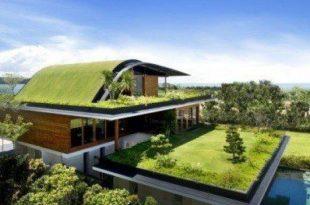 Setup Green Roofs for saving