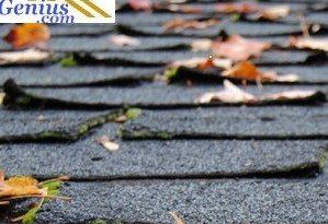 roofing shingles questions answered