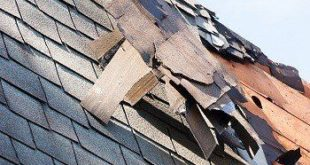 the damage roof shingles
