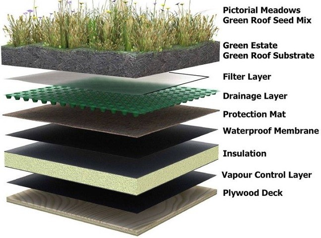 green roof layer