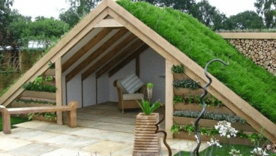 Photo of Pros and Cons of Green Roofs