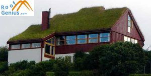 benefits green roofs