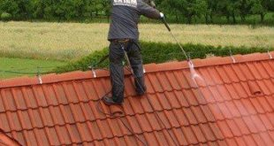 cleaning roof shingles
