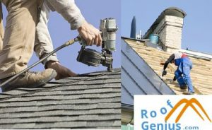 Roof Shingle Repair and Replacement