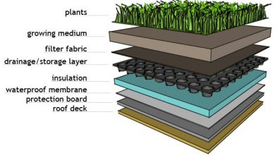 Photo of Green Roof Layers
